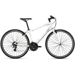 Bicicleta Urbana Giant Alight 2 Dd 24vel Frenos Hidraulicos